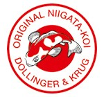 Original Niigata Koi